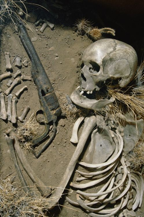 bones in desert gun